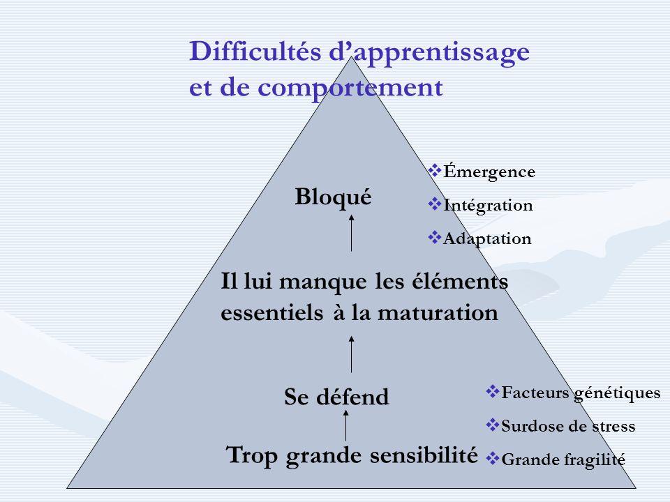 Trop grande sensibilité Se défend Il lui manque les éléments essentiels à la maturation Bloqué Difficultés dapprentissage et de comportement Émergence