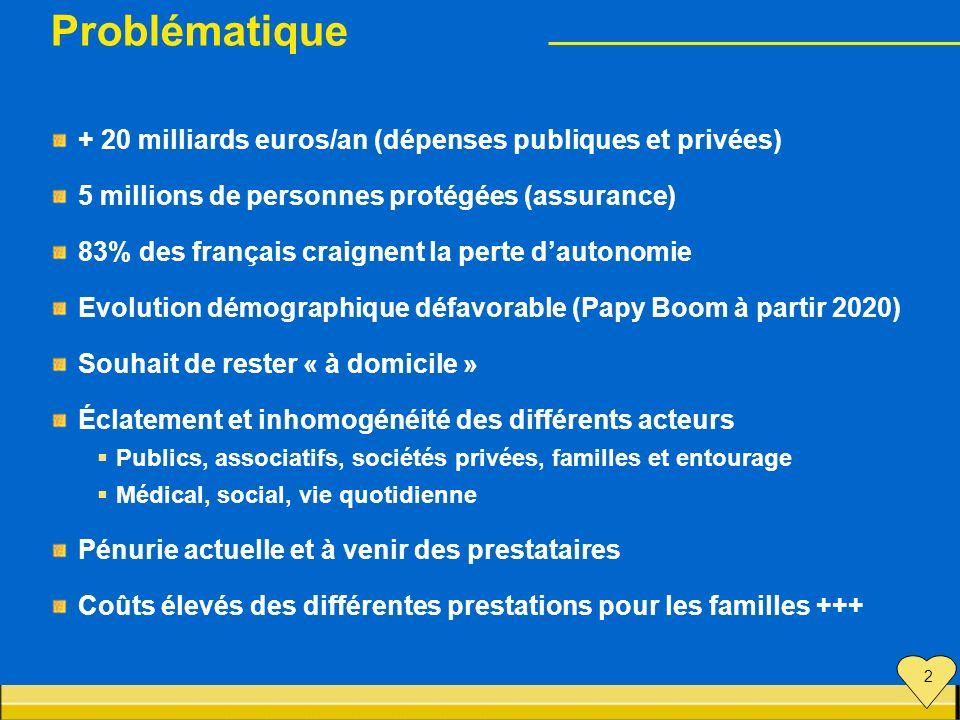 Problématique + 20 milliards euros/an (dépenses publiques et privées) 5 millions de personnes protégées (assurance) 83% des français craignent la pert
