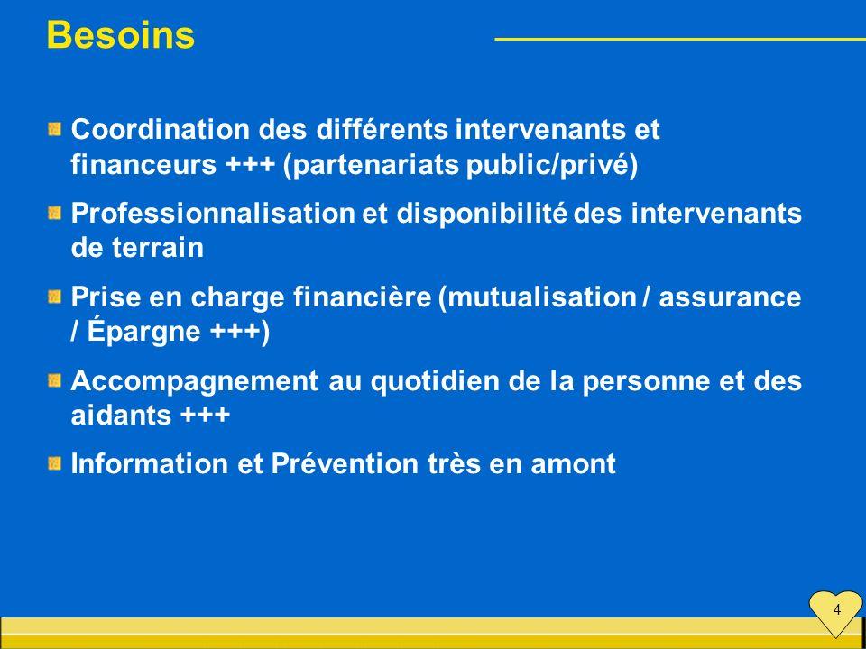 Besoins Coordination des différents intervenants et financeurs +++ (partenariats public/privé) Professionnalisation et disponibilité des intervenants