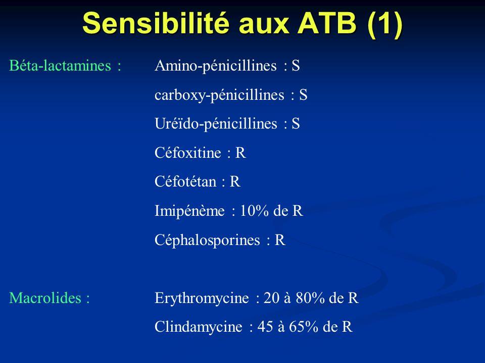 Sensibilité aux ATB (1) Béta-lactamines :Amino-pénicillines : S carboxy-pénicillines : S Uréïdo-pénicillines : S Céfoxitine : R Céfotétan : R Imipénèm