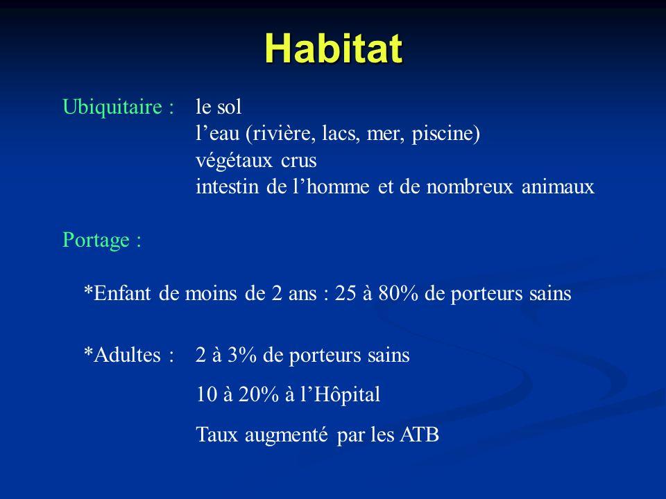 Habitat Ubiquitaire :le sol leau (rivière, lacs, mer, piscine) végétaux crus intestin de lhomme et de nombreux animaux Portage : *Enfant de moins de 2