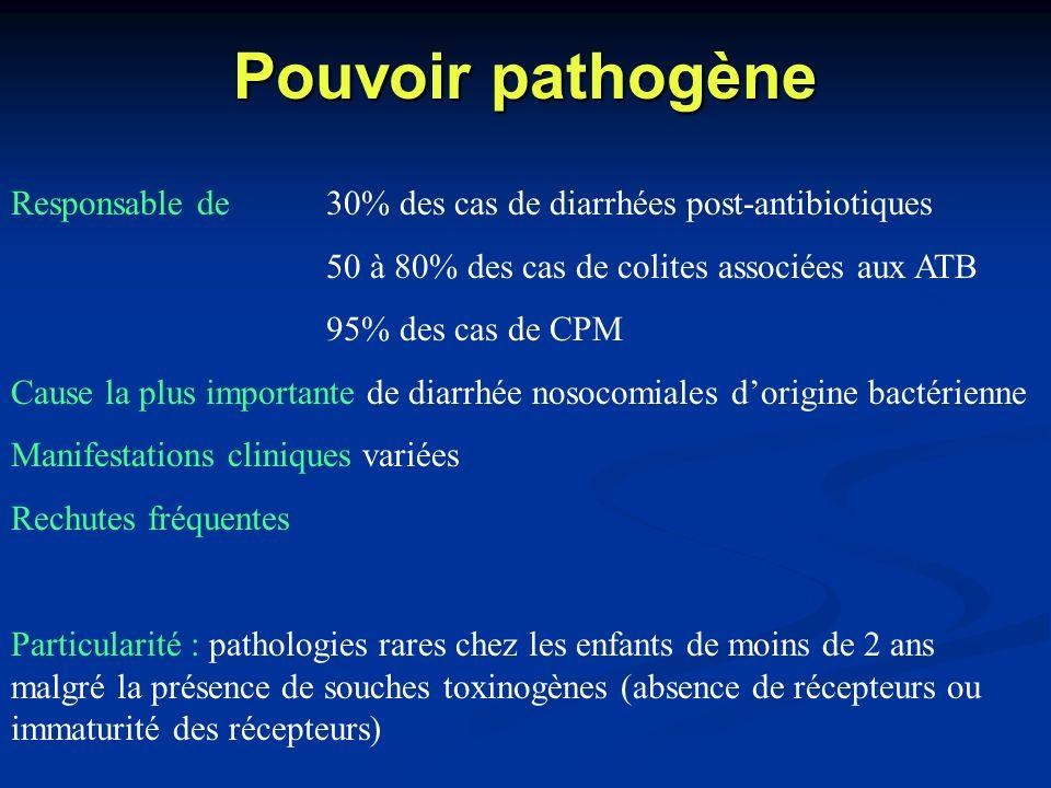 Pouvoir pathogène Responsable de30% des cas de diarrhées post-antibiotiques 50 à 80% des cas de colites associées aux ATB 95% des cas de CPM Cause la