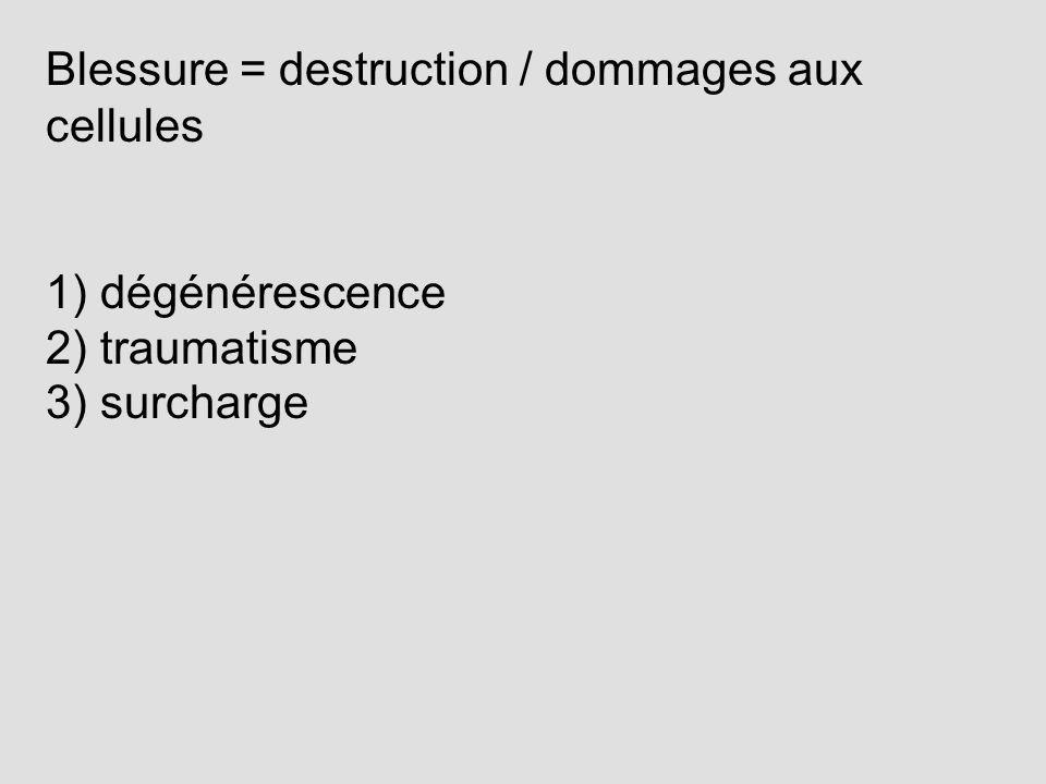 1) dégénérescence 2) traumatisme 3) surcharge