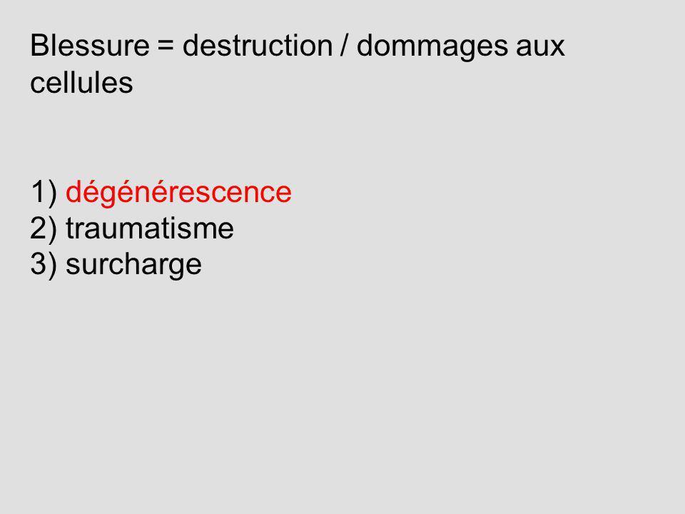 Blessure = destruction / dommages aux cellules 1) dégénérescence 2) traumatisme 3) surcharge