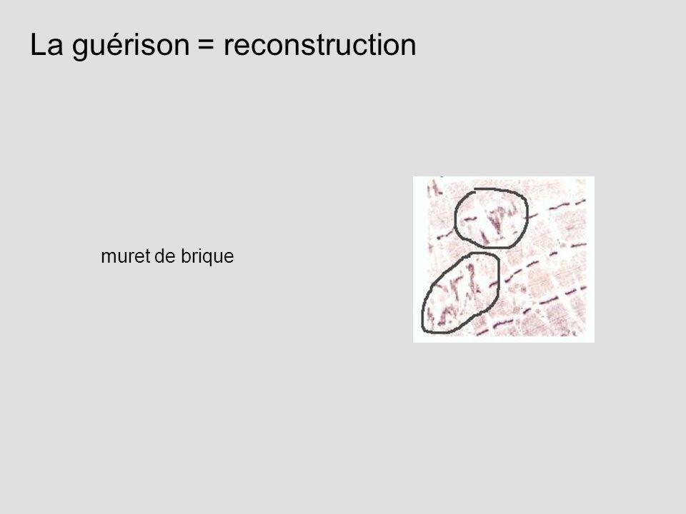 La guérison = reconstruction muret de brique