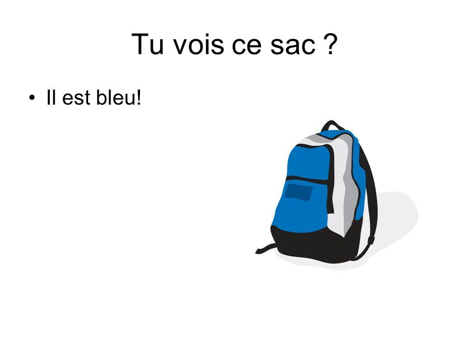 Tu vois ce sac ? Il est bleu!