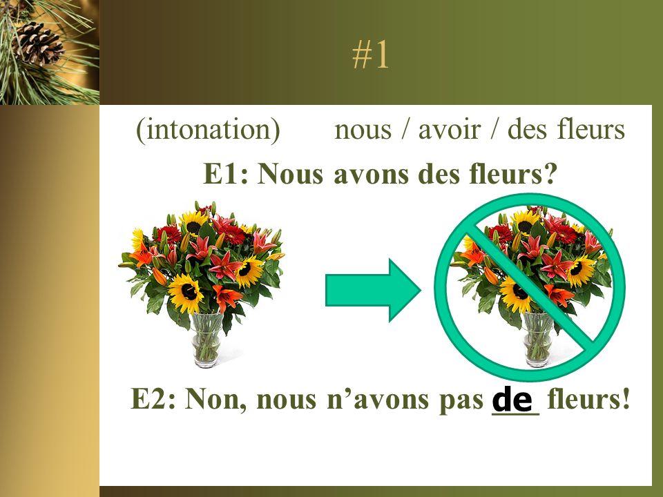 #1 (intonation) nous / avoir / des fleurs E1: Nous avons des fleurs.
