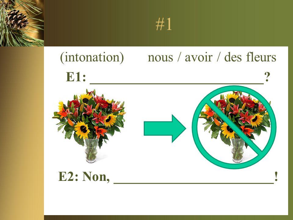 #1 (intonation) nous / avoir / des fleurs E1: _________________________.
