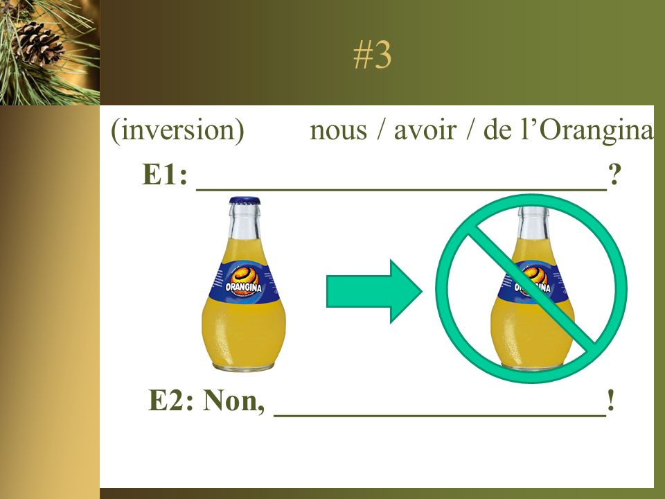 #3 (inversion) nous / avoir / de lOrangina E1: __________________________.