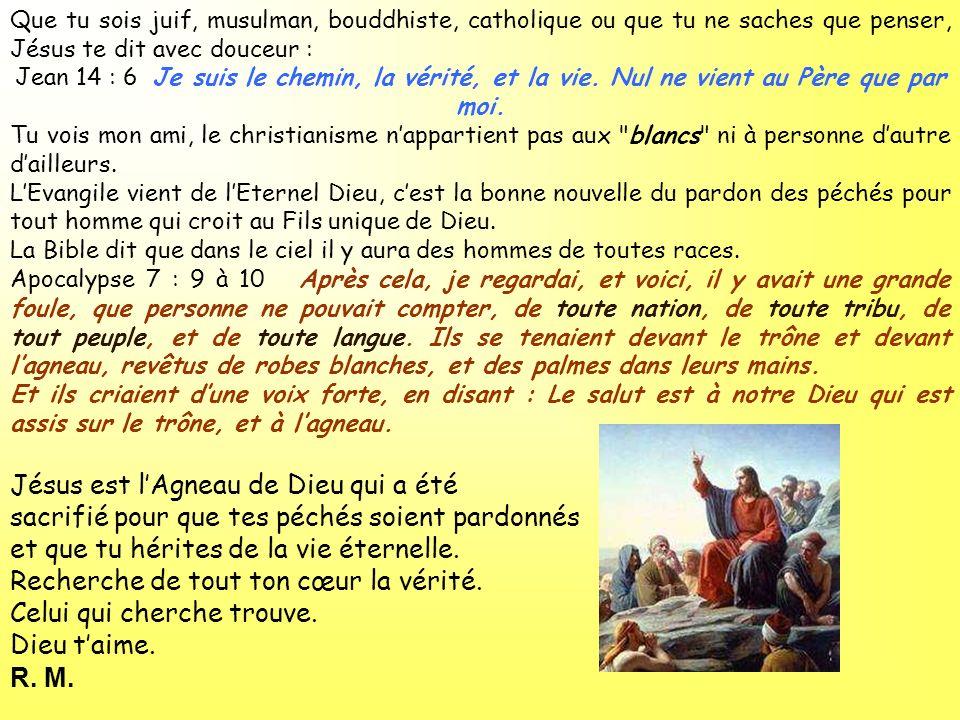 Que tu sois juif, musulman, bouddhiste, catholique ou que tu ne saches que penser, Jésus te dit avec douceur : Jean 14 : 6 Je suis le chemin, la vérit