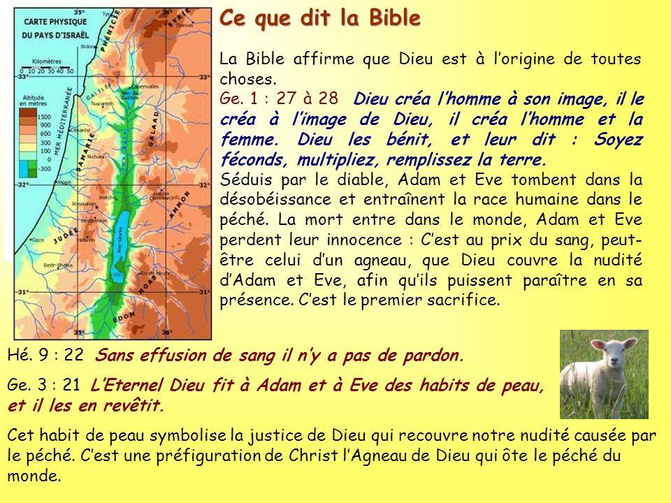 Ce que dit la Bible La Bible affirme que Dieu est à lorigine de toutes choses. Ge. 1 : 27 à 28 Dieu créa lhomme à son image, il le créa à limage de Di