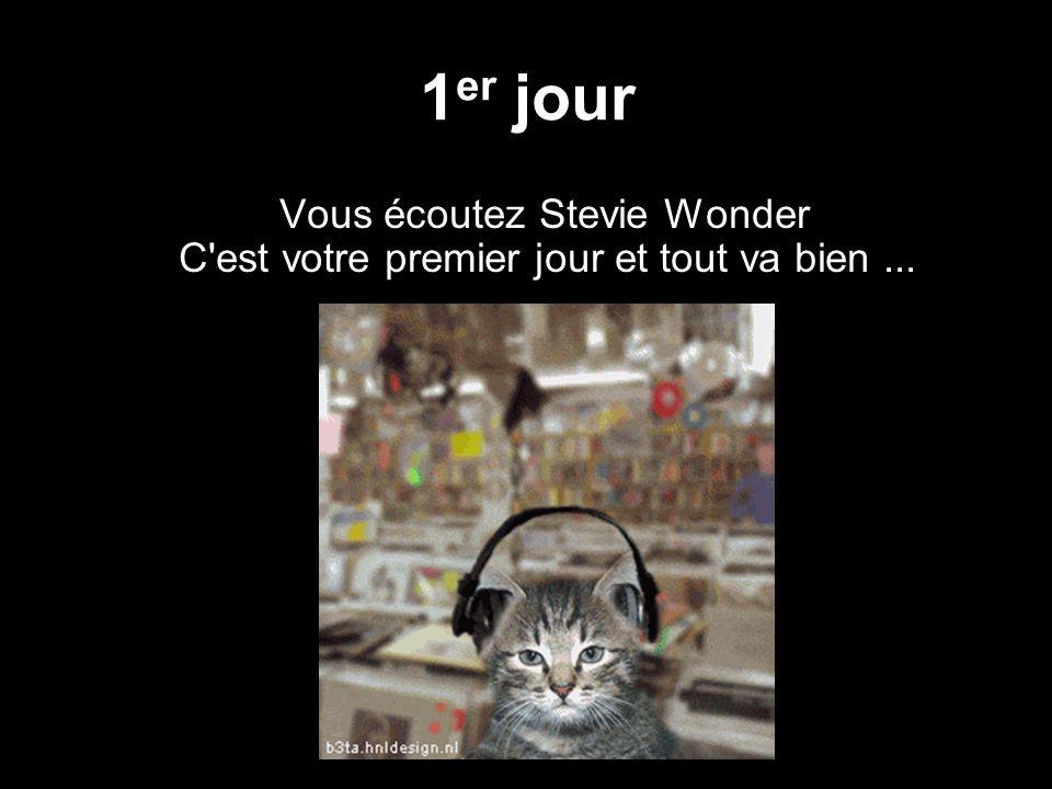 1 er jour Vous écoutez Stevie Wonder C est votre premier jour et tout va bien...