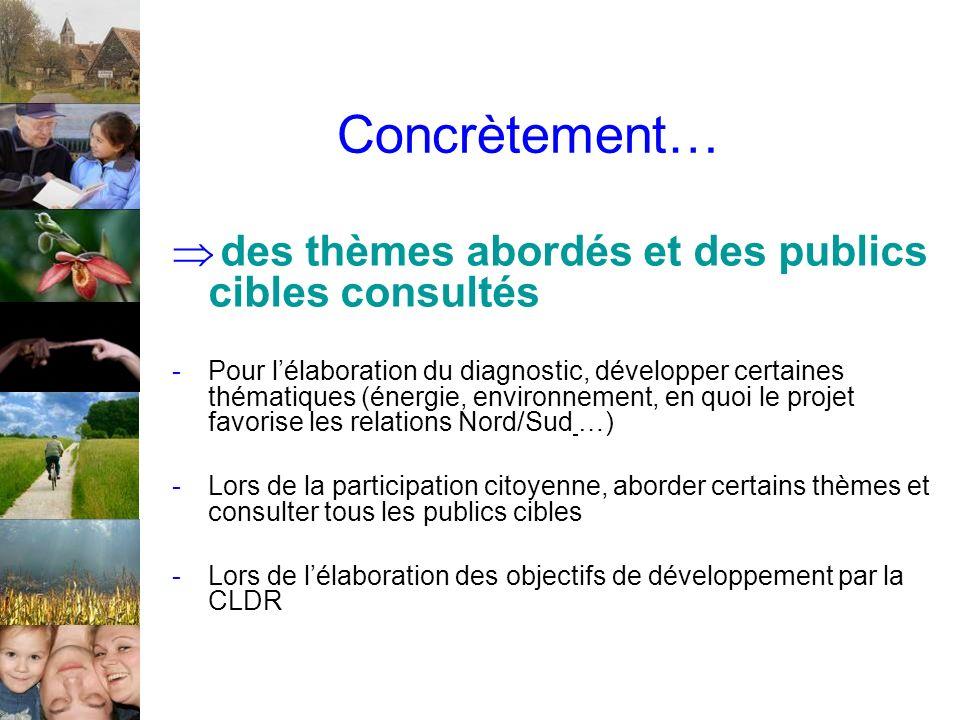 Concrètement… des thèmes abordés et des publics cibles consultés -Pour lélaboration du diagnostic, développer certaines thématiques (énergie, environn