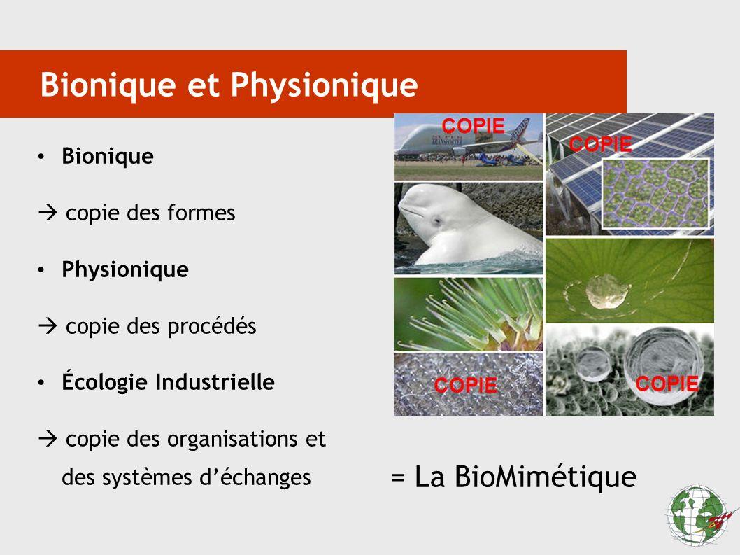 Bionique et Physionique Bionique copie des formes Physionique copie des procédés Écologie Industrielle copie des organisations et des systèmes déchang
