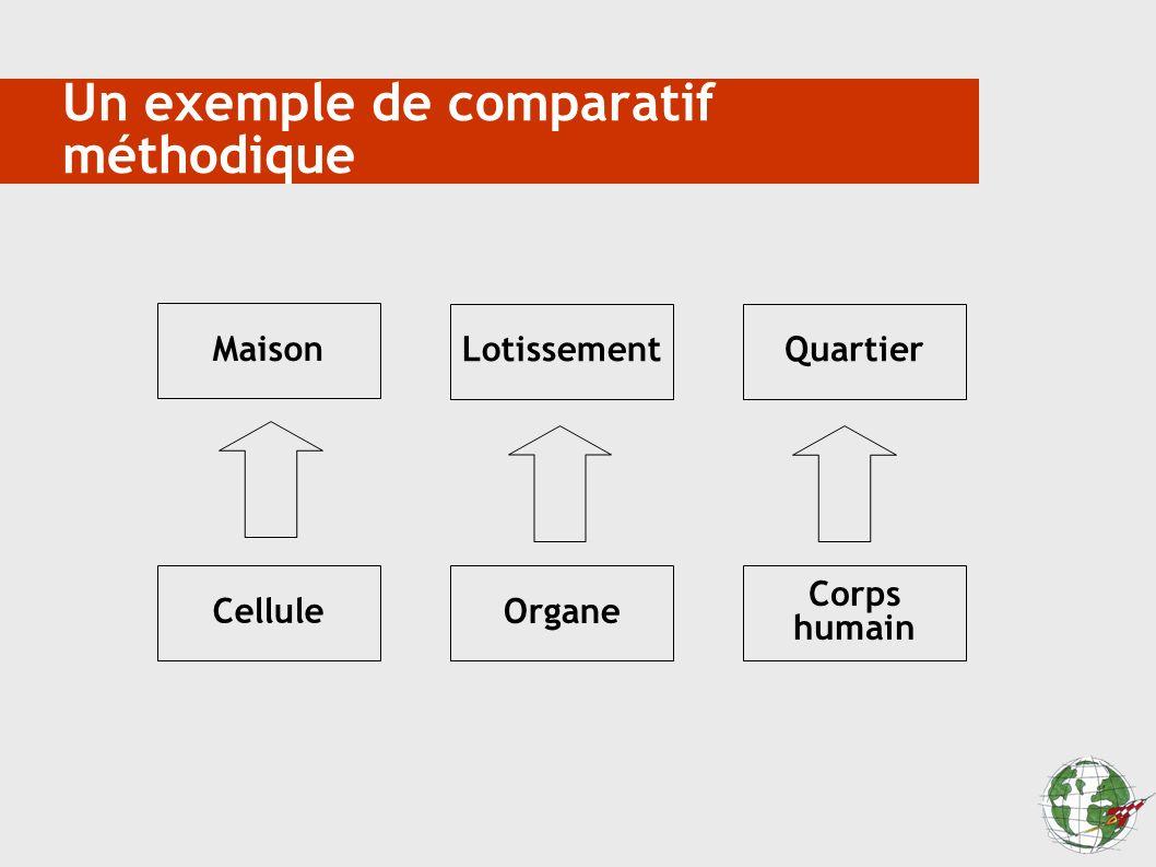 Un exemple de comparatif méthodique Maison LotissementQuartier Cellule Organe Corps humain