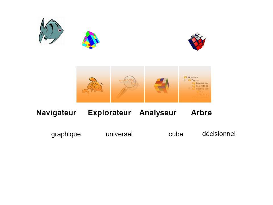 Navigateur graphique Explorateur universel Analyseur cube Arbre décisionnel