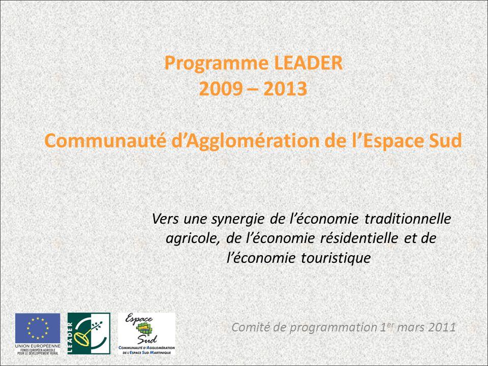 Programme LEADER 2009 – 2013 Communauté dAgglomération de lEspace Sud Comité de programmation 1 er mars 2011 Vers une synergie de léconomie traditionnelle agricole, de léconomie résidentielle et de léconomie touristique