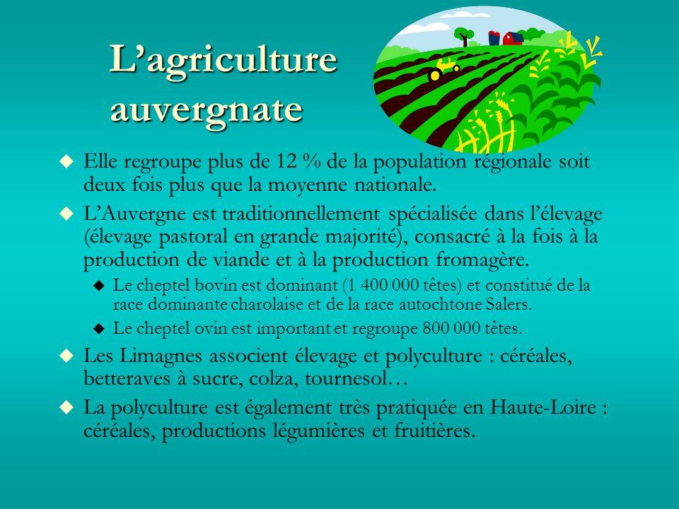 Lagriculture auvergnate Elle regroupe plus de 12 % de la population régionale soit deux fois plus que la moyenne nationale.