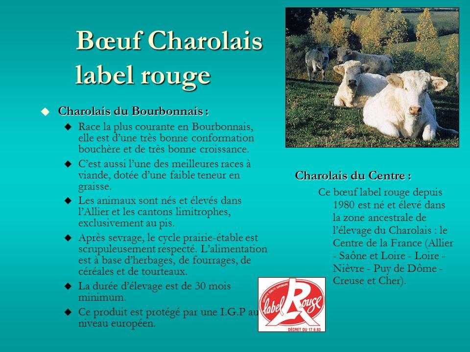 Bœuf Charolais label rouge Charolais du Bourbonnais : Charolais du Bourbonnais : Race la plus courante en Bourbonnais, elle est dune très bonne conformation bouchère et de très bonne croissance.