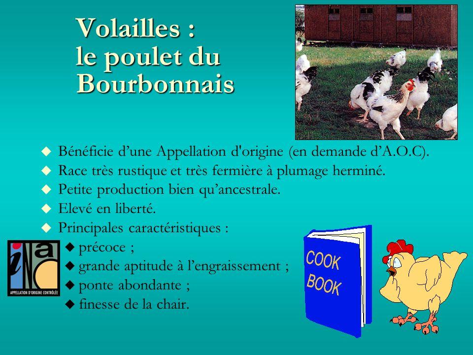 Volailles : le poulet du Bourbonnais Bénéficie dune Appellation d origine (en demande dA.O.C).