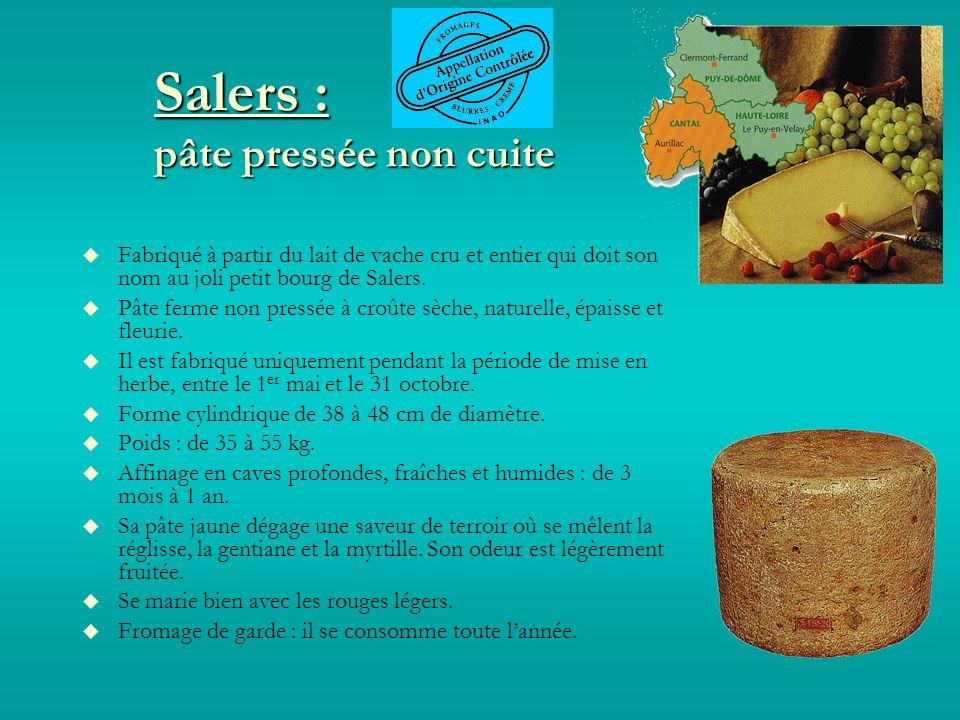 Salers : pâte pressée non cuite Fabriqué à partir du lait de vache cru et entier qui doit son nom au joli petit bourg de Salers.