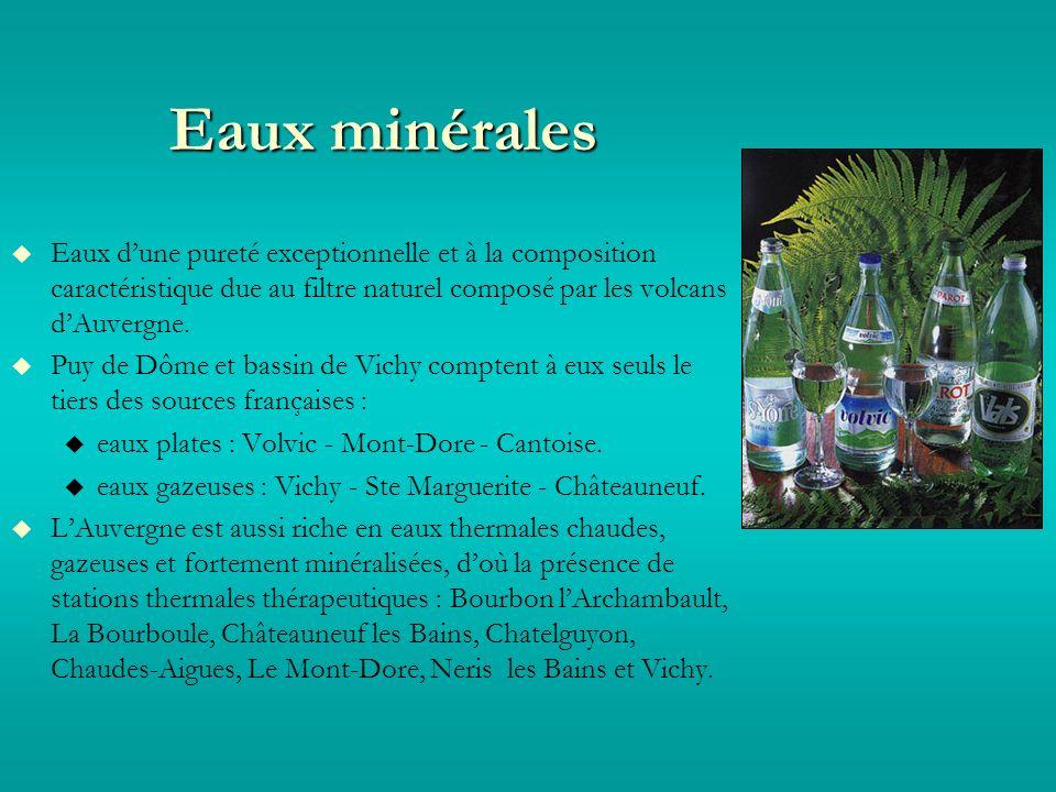 Eaux minérales Eaux dune pureté exceptionnelle et à la composition caractéristique due au filtre naturel composé par les volcans dAuvergne.