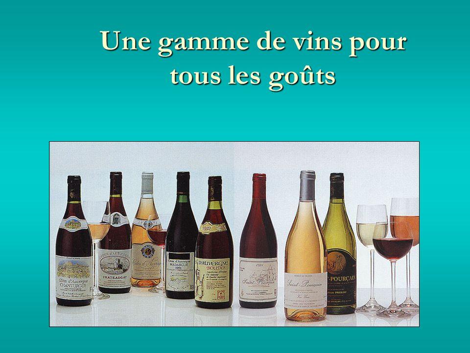 Une gamme de vins pour tous les goûts
