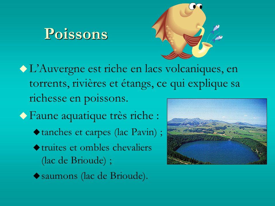 Poissons LAuvergne est riche en lacs volcaniques, en torrents, rivières et étangs, ce qui explique sa richesse en poissons.