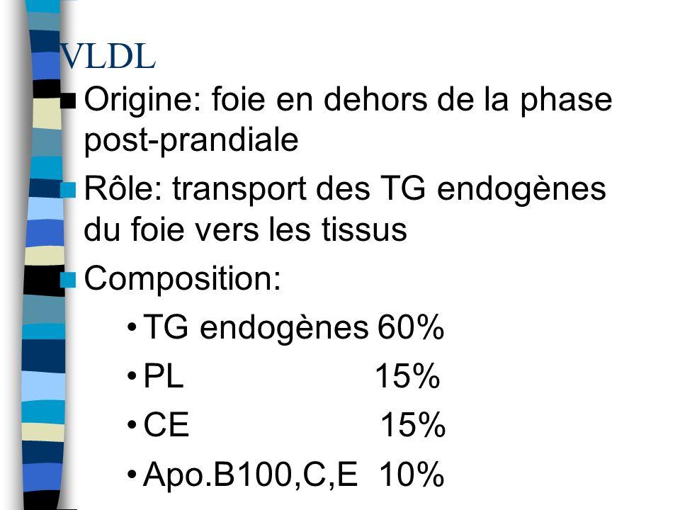 VLDL Origine: foie en dehors de la phase post-prandiale Rôle: transport des TG endogènes du foie vers les tissus Composition: TG endogènes 60% PL 15%
