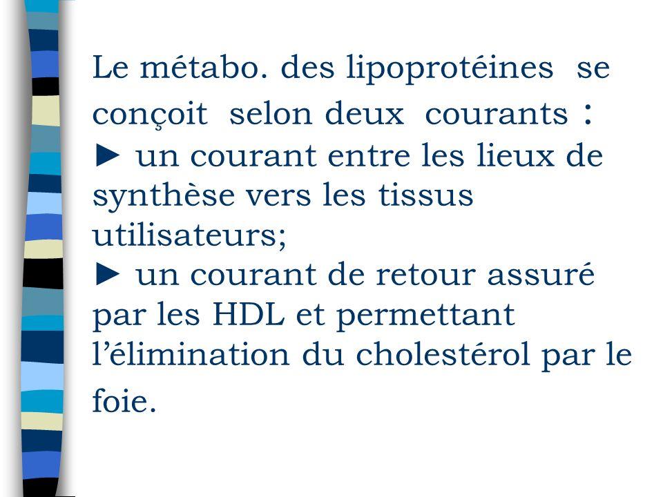 Le métabo. des lipoprotéines se conçoit selon deux courants : un courant entre les lieux de synthèse vers les tissus utilisateurs; un courant de retou