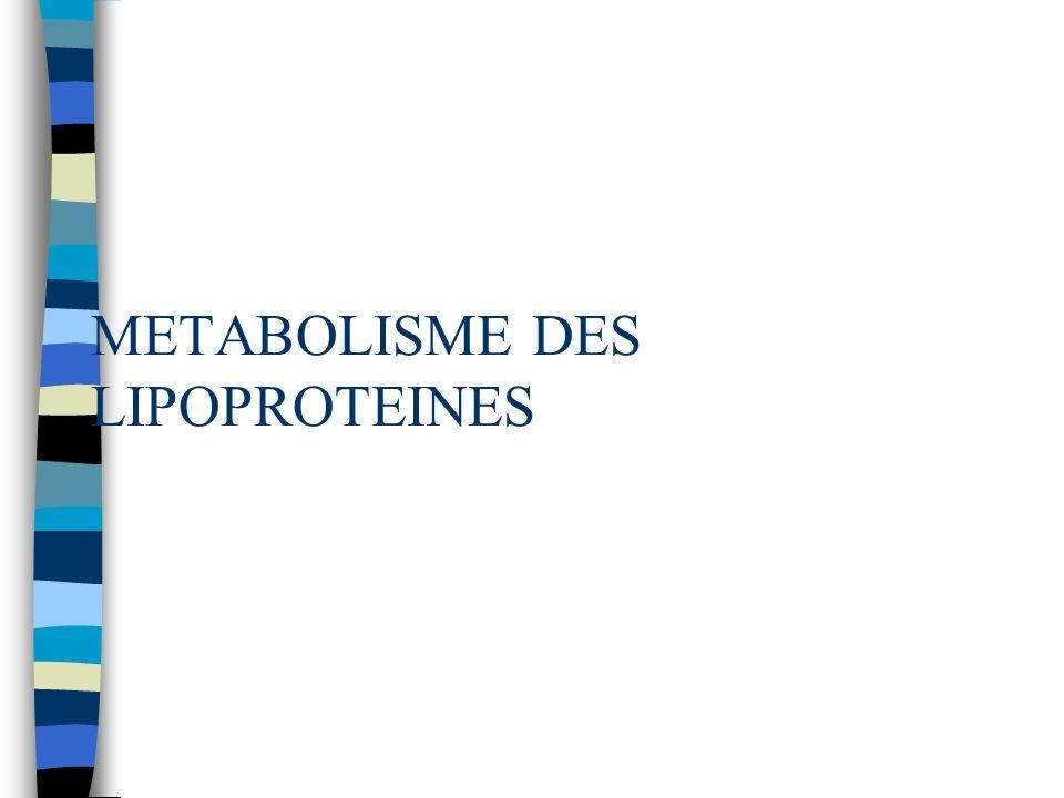METABOLISME DES LIPOPROTEINES