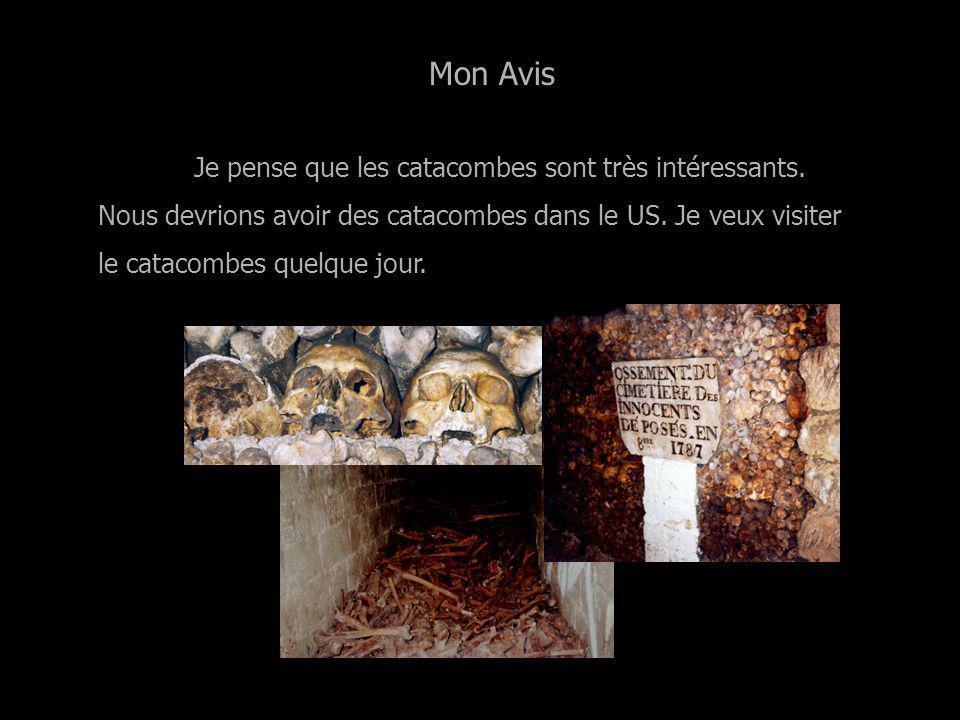 Conservation des Ossements Les os sont mis dans les salles dans le catacombes.