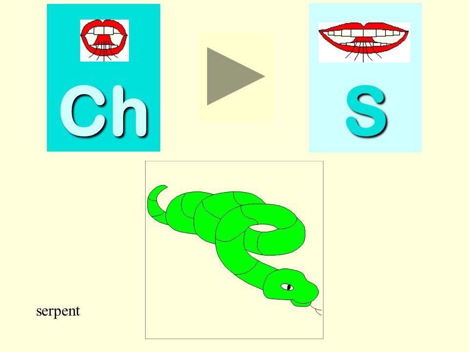 Une image est présentée. Il faut choisir si lon entend le son « s » ou le son « ch » dans son nom (3 séries: en position initiale, médiane et finale).