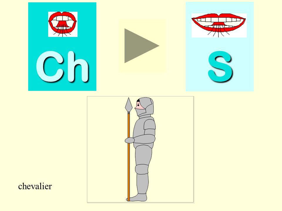 scie Ch SSSS scie