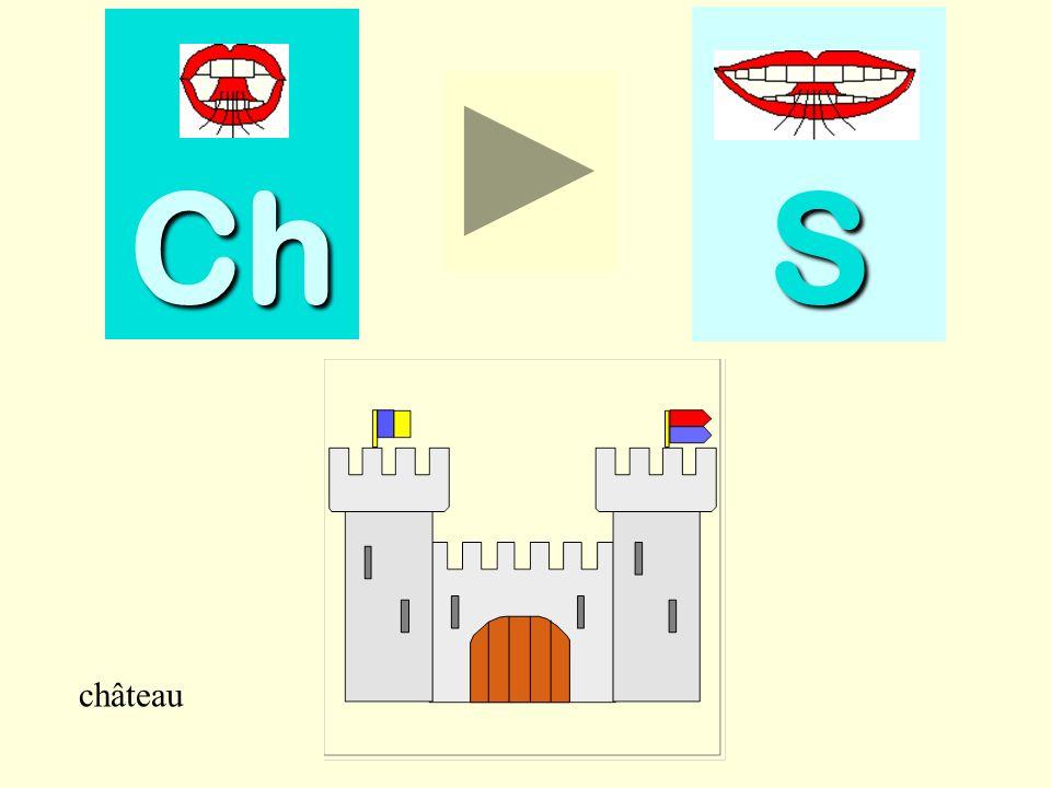 short Ch SSSS short
