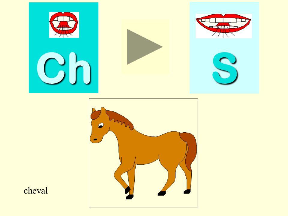 cheval Ch SSSS cheval