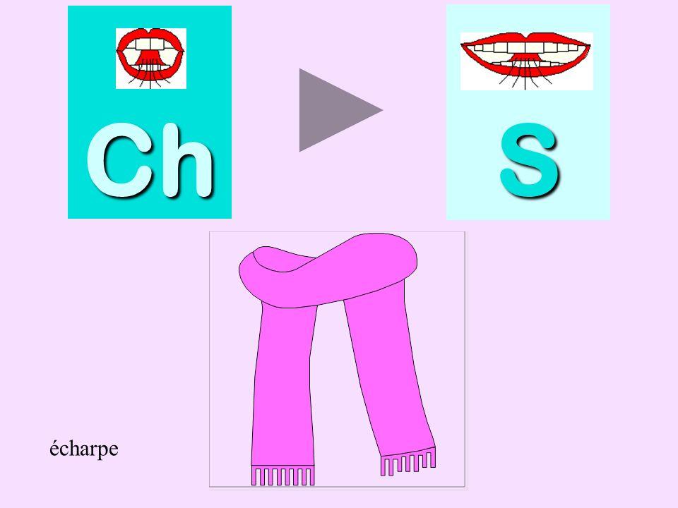 dessin Ch SSSS dessin