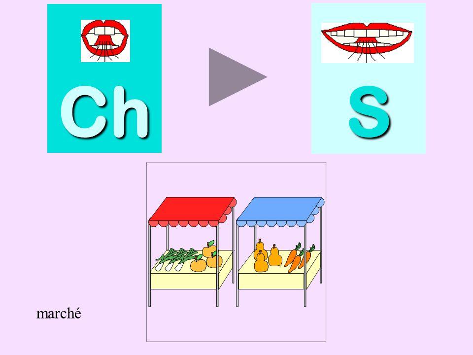 piscine Ch SSSS piscine