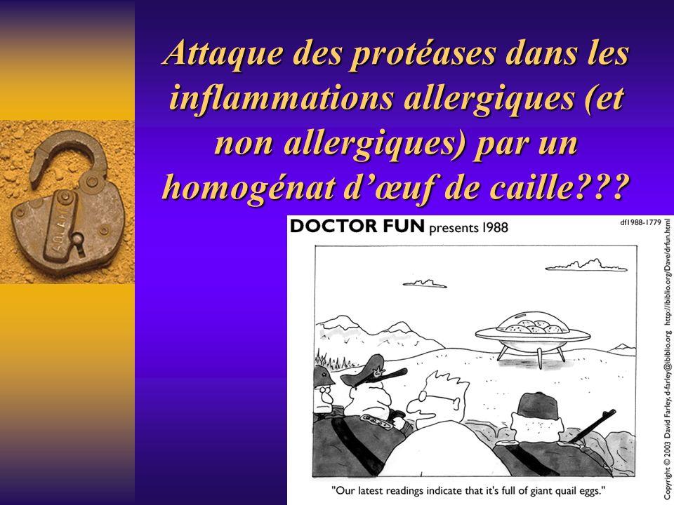 Attaque des protéases dans les inflammations allergiques (et non allergiques) par un homogénat dœuf de caille???