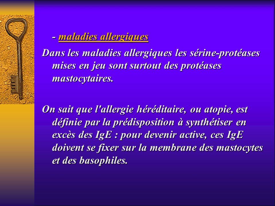 - maladies allergiques - maladies allergiques Dans les maladies allergiques les sérine-protéases mises en jeu sont surtout des protéases mastocytaires