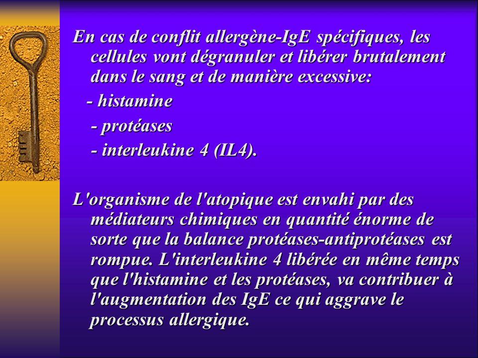 En cas de conflit allergène-IgE spécifiques, les cellules vont dégranuler et libérer brutalement dans le sang et de manière excessive: - histamine - h