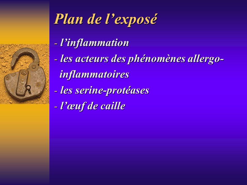 Plan de lexposé - linflammation - les acteurs des phénomènes allergo- inflammatoires inflammatoires - les serine-protéases - lœuf de caille