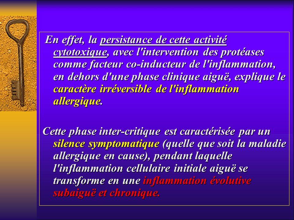 En effet, la persistance de cette activité cytotoxique, avec l'intervention des protéases comme facteur co-inducteur de l'inflammation, en dehors d'un