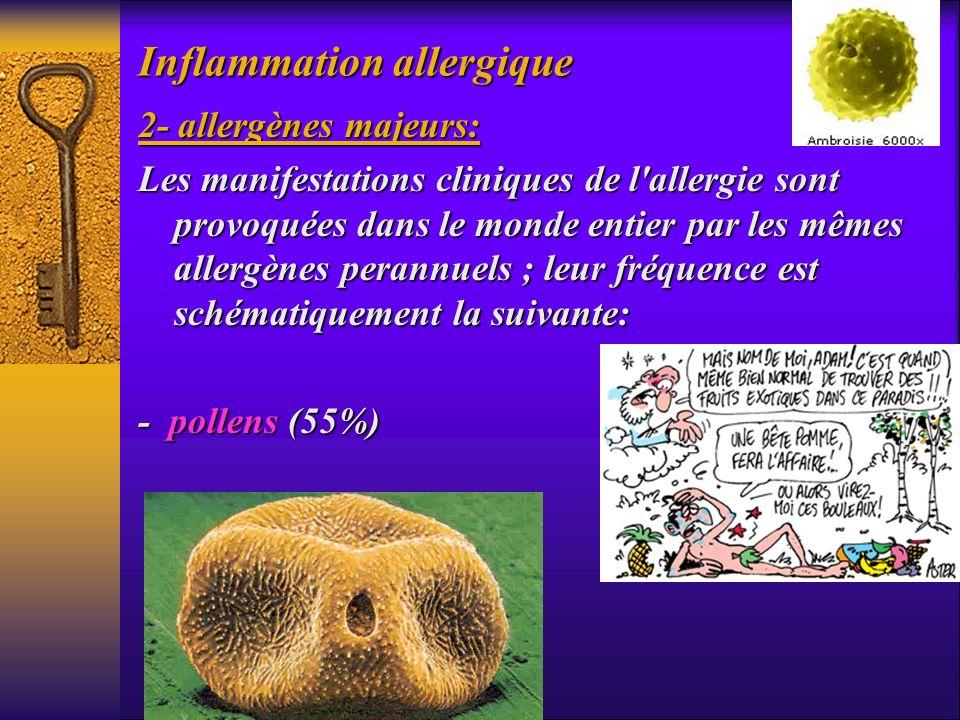 Inflammation allergique 2- allergènes majeurs: Les manifestations cliniques de l'allergie sont provoquées dans le monde entier par les mêmes allergène