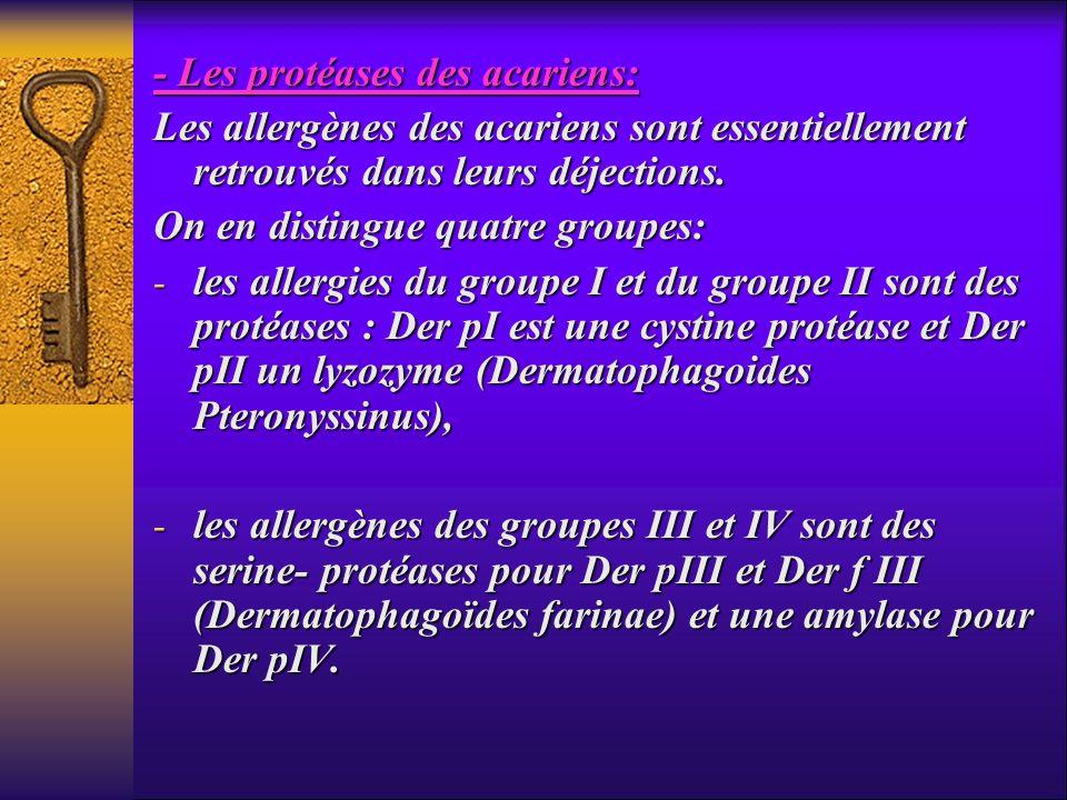 - Les protéases des acariens: Les allergènes des acariens sont essentiellement retrouvés dans leurs déjections. On en distingue quatre groupes: - les