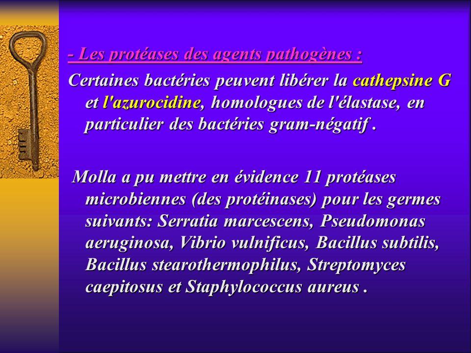 - Les protéases des agents pathogènes : Certaines bactéries peuvent libérer la cathepsine G et l'azurocidine, homologues de l'élastase, en particulier