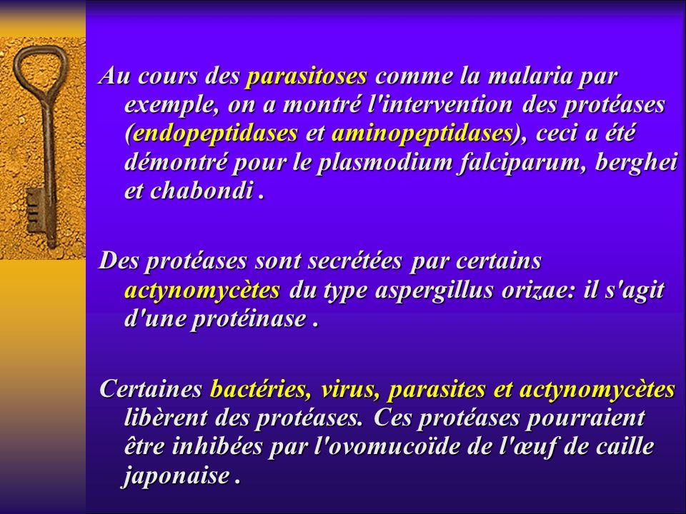 Au cours des parasitoses comme la malaria par exemple, on a montré l'intervention des protéases (endopeptidases et aminopeptidases), ceci a été démont