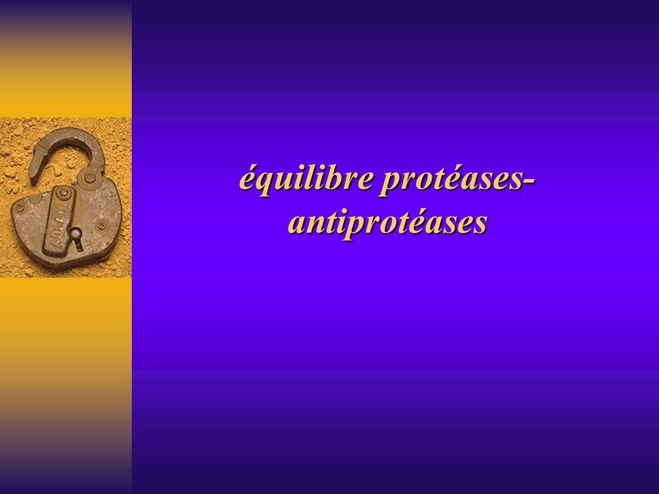équilibre protéases- antiprotéases