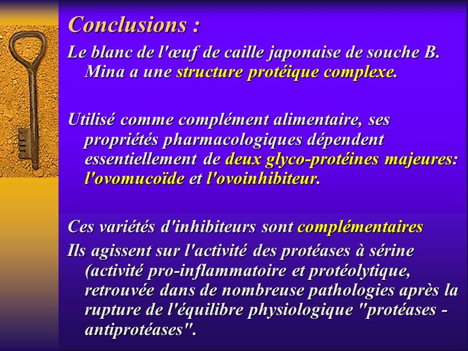 Conclusions : Le blanc de l'œuf de caille japonaise de souche B. Mina a une structure protéique complexe. Utilisé comme complément alimentaire, ses pr