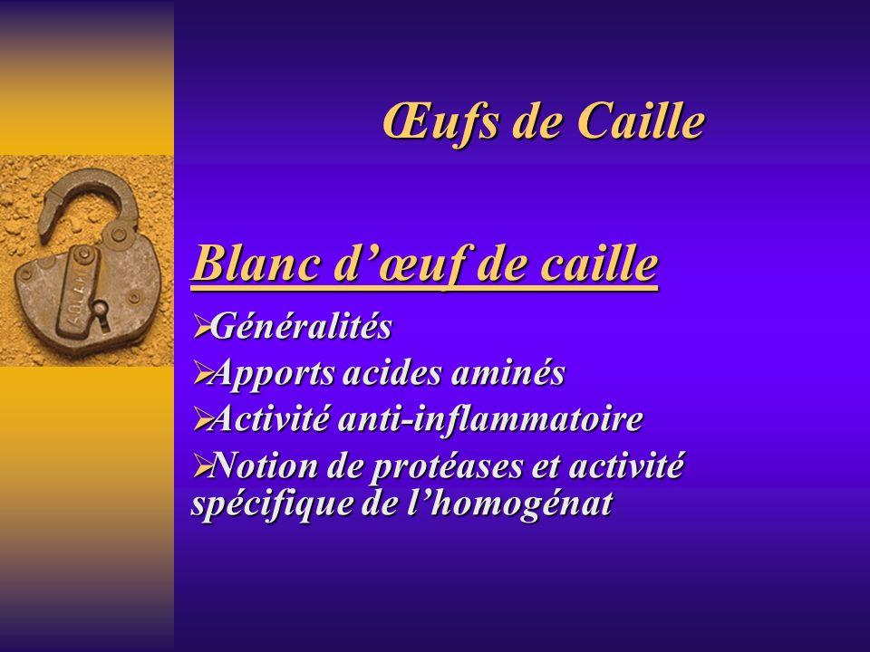 Blanc dœuf de caille Généralités Généralités Apports acides aminés Apports acides aminés Activité anti-inflammatoire Activité anti-inflammatoire Notio